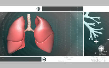 inhale: Digital illustration of human lungs in colour background
