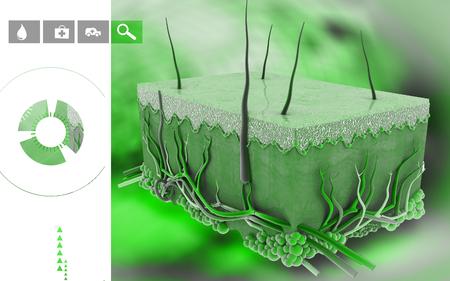 Digital illustration of Skin in colour background Banco de Imagens