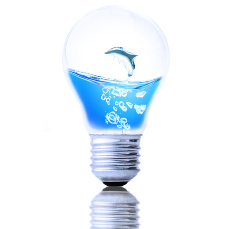 Water Dolphin in the light bulb, Save the water concept.