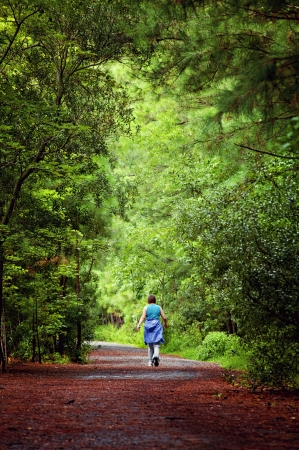 woman on trail in forrest nature park Banco de Imagens
