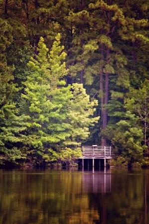 Bridge near water with tree reflections Stock Photo