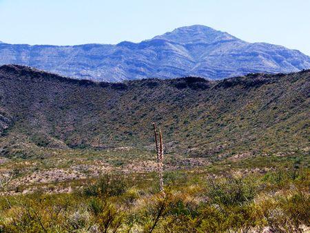 plantas del desierto: dos capas de sierras con plantas del desierto en primer plano  Foto de archivo