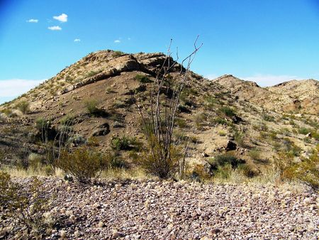 ocotillo: succession of desert hills with rock and ocotillo plants in foreground Stock Photo