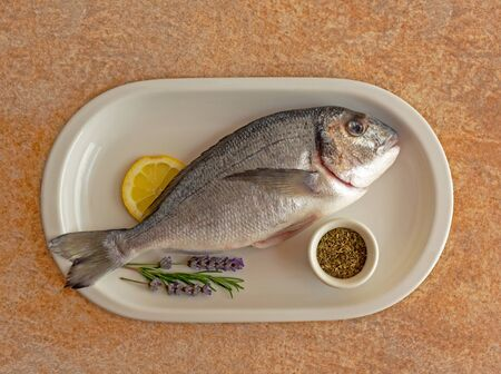 Fresh fish cleaned and prepared for cooking with sprigs of lavender, rosemary, lemon wedge and spices on a white plate on a textured stone background. A freshly caught Dorado. Food photo