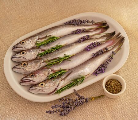 Fresh fish cleaned and prepared for cooking with sprigs of lavender, rosemary and spices on a white plate on a textured natural textile background. Just caught a hake. Food photos