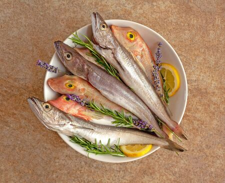 Fresh fish cleaned and prepared for cooking with sprigs of lavender, rosemary and lemon slices on a white plate on a textured stone background. Freshly caught hake and gurnard Stock fotó