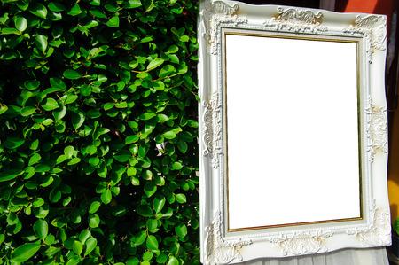 graden: Picture frame in the graden.