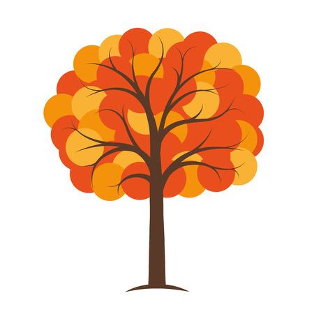 orange and yellow autumn tree vector illustration EPS10 Reklamní fotografie - 109938197