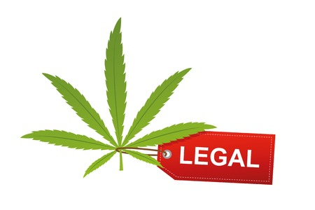cannabis leaf with red legal label isoladet on white background vector illustration EPS10