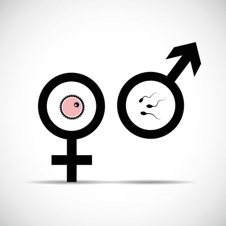 male female symbol procreation vector illustration EPS10
