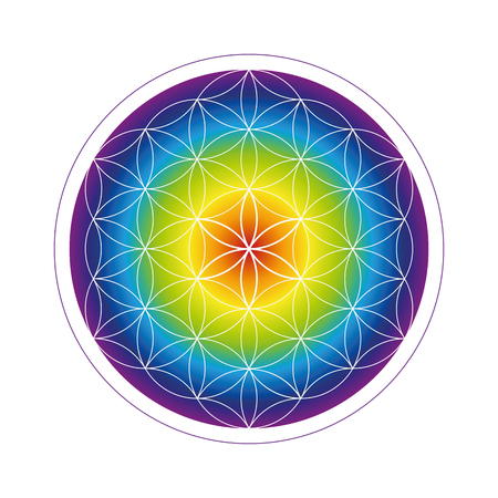 colorful flower of life geometry in rainbow colors vector illustration EPS10