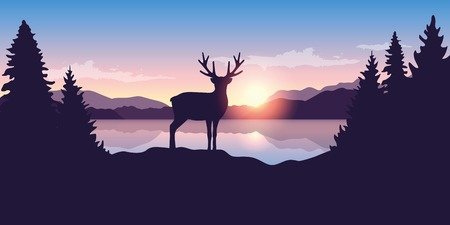 reindeer by the lake at sunrise wildlife nature landscape vector illustration EPS10 Ilustracja