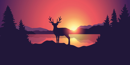 beautiful wildlife landscape with reindeer lake mountains and forest at sunset vector illustration EPS10 Illustration