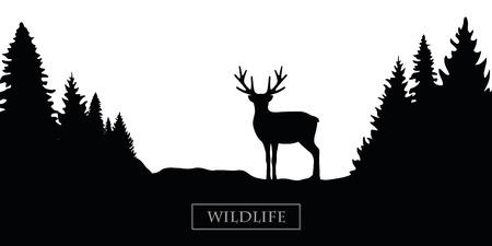 fauna selvatica, renna, silhouette, foresta, paesaggio, nero bianco, vettore, illustrazione, eps10