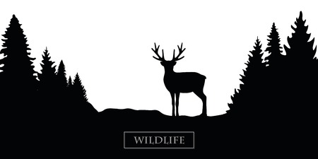 wildlife reindeer silhouette forest landscape black and white vector illustration EPS10