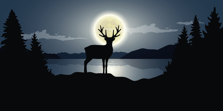 reindeer by the lake full moon dark night wildlife nature landscape vector illustration EPS10
