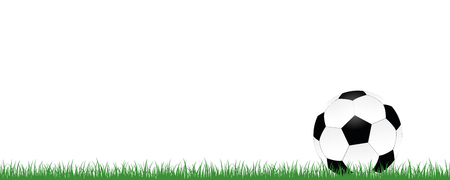 football on green meadow isolated on white background vector illustration EPS10
