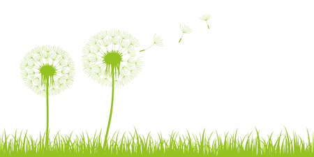 two dandelion silhouette with flying seeds on green meadow on white background vector illustration EPS10
