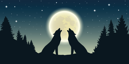 two wolves howl at the full moon in forest landscape vector illustration EPS10 Stock Illustratie