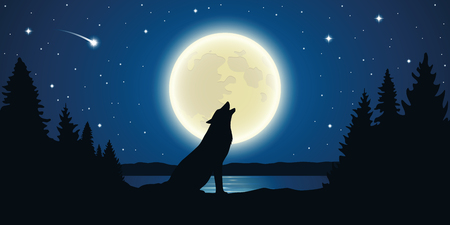 wolf howls to the full moon in a starry night vector illustration EPS10 일러스트