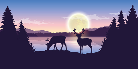 two reindeers by the lake at night with full moon purple nature landscape vector illustration EPS10