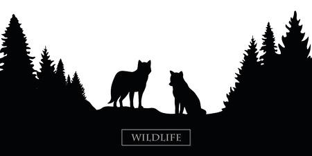 wildlife wolf silhouette forest landscape black and white vector illustration EPS10 Illustration