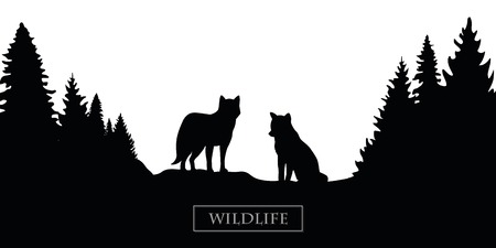 wildlife wolf silhouette forest landscape black and white vector illustration EPS10