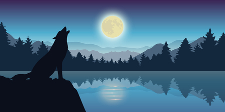 wolf howls at full moon by the lake nature landscape vector illustration EPS10 Stock Illustratie