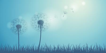 dandelion silhouette on blue background with flying seeds vector illustration EPS10 Ilustração Vetorial