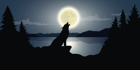wolf is howling to the full moon by the lake dark night wildlife nature landscape vector illustration EPS10