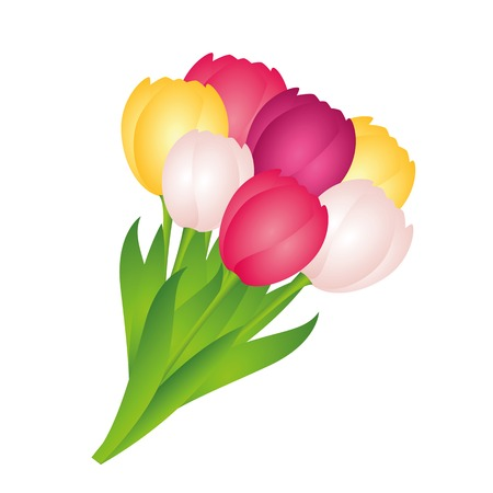 bouquet of colorful tulips on white background vector illustration EPS10