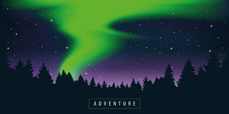 green polar lights in starry sky in the forest vector illustration EPS10