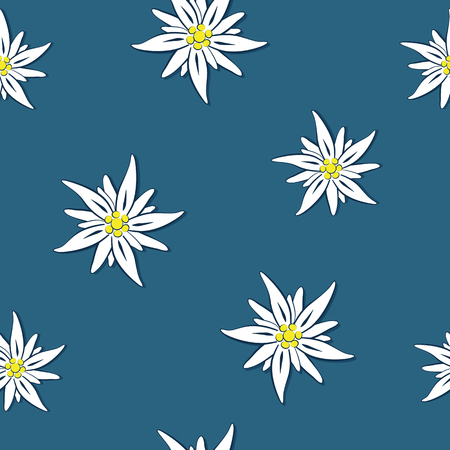 seamless pattern edelweiss flower on blue background vector illustration EPS10