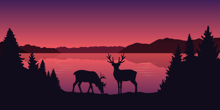 two reindeers by the lake beautiful red landscape vector illustration EPS10 Stock Vector - 124439972