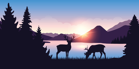two moose graze by the river in the forest at sunrise vector illustration EPS10 일러스트