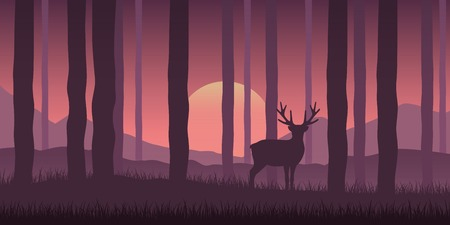 lonely wildlife reindeer in the forest purple nature landscape at sunshine vector illustration EPS10