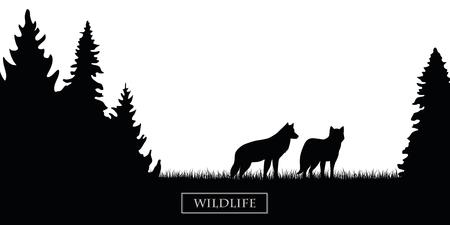 Deux loups de la faune silhouette dans la forêt sur le pré noir et blanc vector illustration EPS10