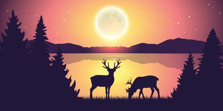 two reindeers by the lake at night with full moon and starry sky nature landscape vector illustration