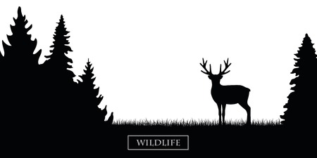 wildlife reindeer silhouette in the forest on the meadow black and white vector illustration Illustration