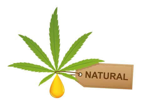 cannabis leaf with oil drop and natural label isoladet on white background vector illustration EPS10 Stock Illustratie