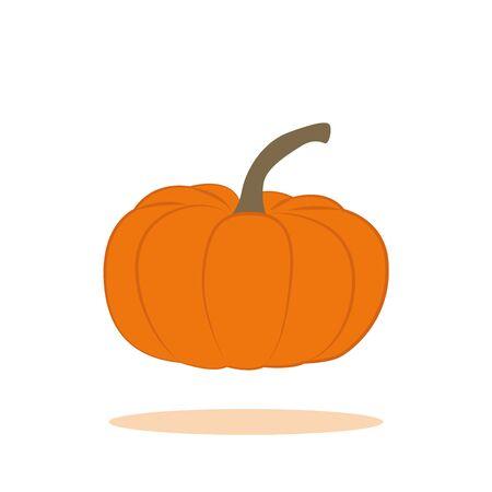 orange pumpkin isolated on white background vector illustration EPS10