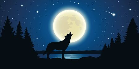 wolf howls to the full moon in a starry night vector illustration EPS10 Ilustração