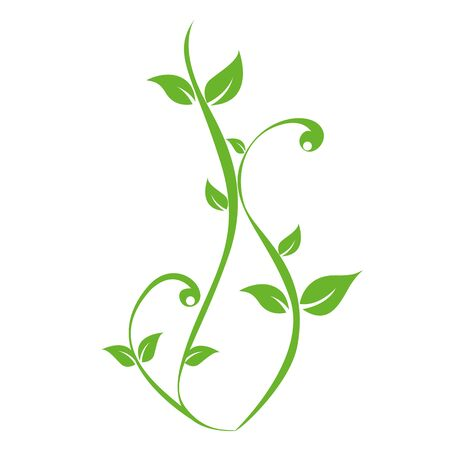 green plants tendril on white background vector illustration Ilustrace