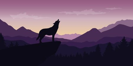 wolf at beautiful purple mountain wildlife nature landscape vector illustration