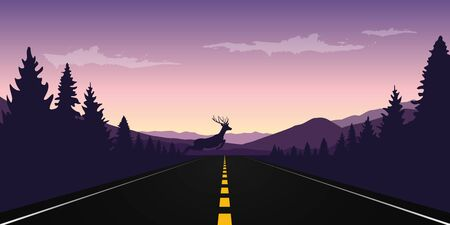 elk jumps over paved road wildlife landscape