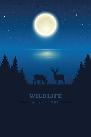 wildlife elk in the wilderness by the lake with full moon in a starry night vector illustration
