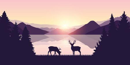 two reindeers by the lake at sunrise wildlife nature landscape vector illustration EPS10 Ilustracja