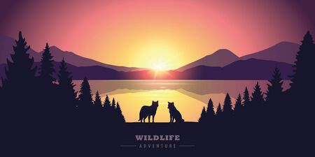 wildlife adventure wolf in the wilderness by the lake at sunset vector illustration EPS10