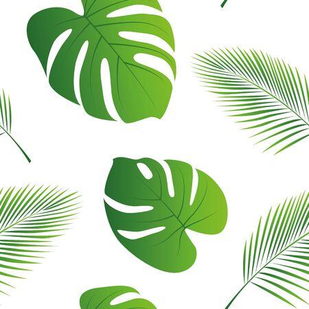 seamless pattern palm leaf on white background illustration