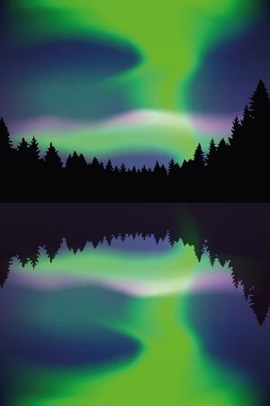 beautiful polar lights by the lake in forest vector illustration